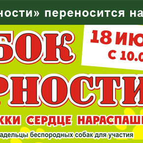 «Кубок Верности» переносится на 18 июня!