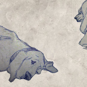 Акция по стерилизации домашних животных продлена на август