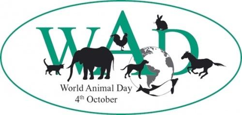 День защиты животных в Украине