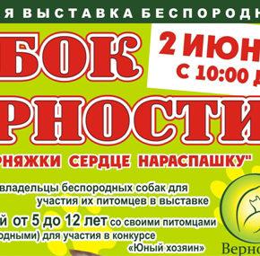 КУБОК ВЕРНОСТИ 2012 - «У дворняжки сердце нараспашку!»