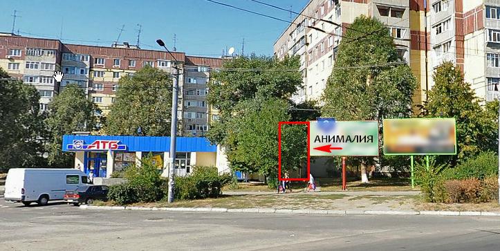 Акция по бесплатной стерилизации животных Днепропетровск
