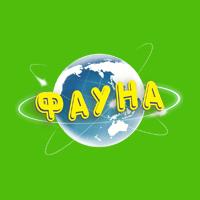 Сеть розничной и оптовой торговли «Фауна»