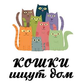 Загляните в новую базу кошек