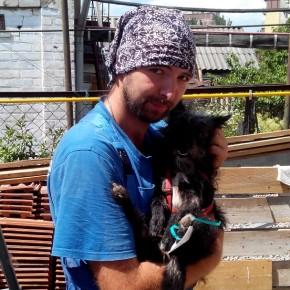 Бесплатная стерилизация животных в Днепропетровске стартовала