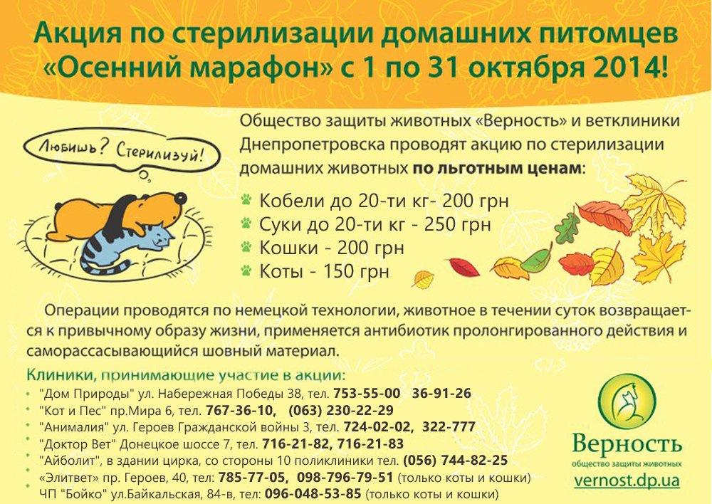 Стерилизация собаки, кота, кошки Днепропетровск