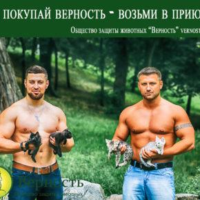 """Общество защиты животных """" Верность """" презентует фотопроект """"Не покупай-возьми в приюте""""!"""